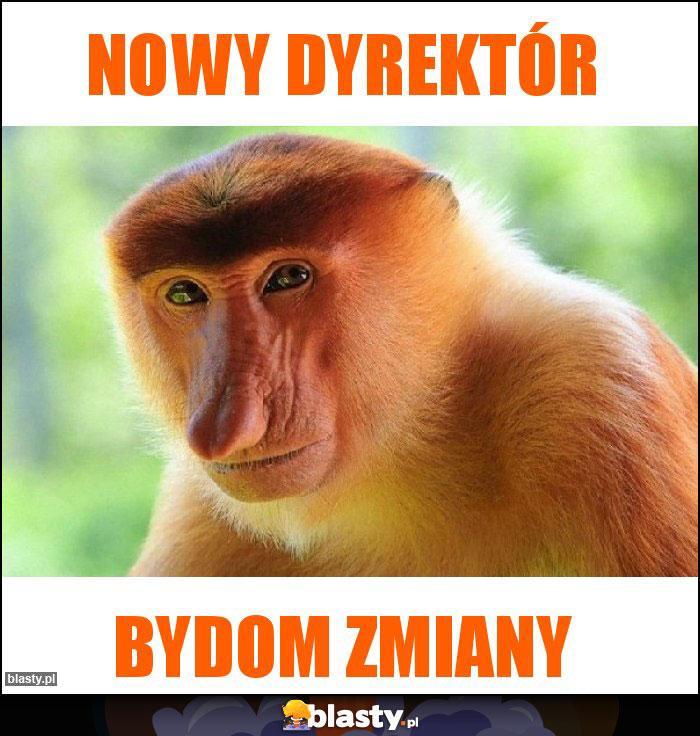 Nowy Dyrektór