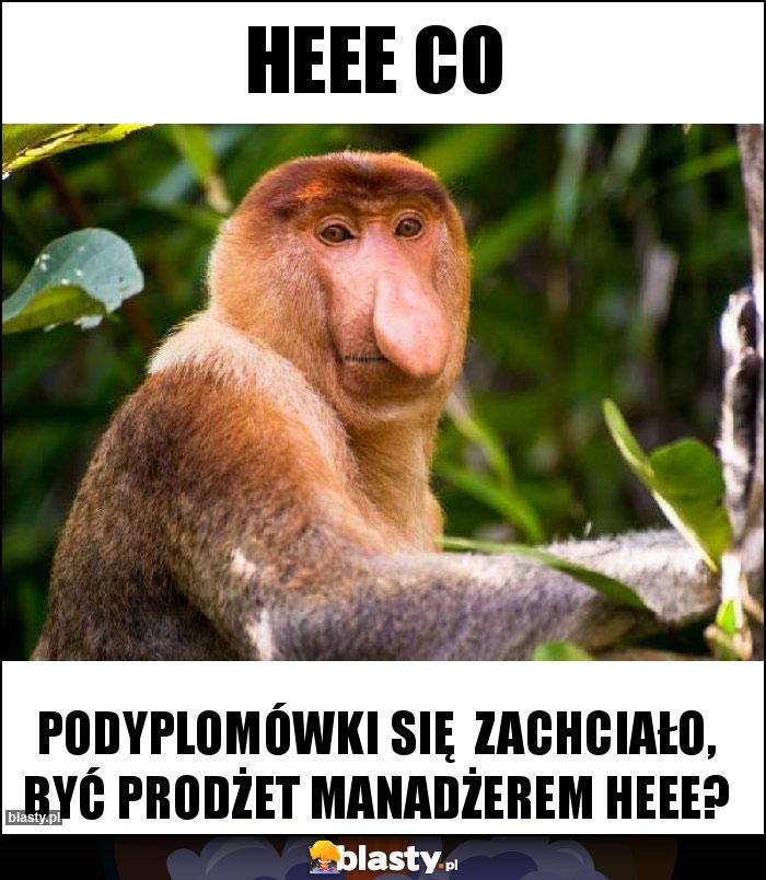 Heee co