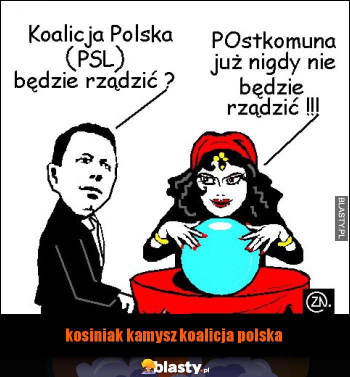 kosiniak kamysz koalicja polska