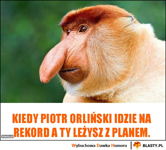 Kiedy Piotr Orliński idzie na rekord a ty leżysz z planem.