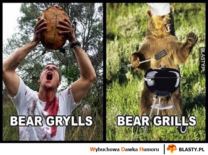 Bear Grylls vs Bear Grills niedźwiedź robi grilla