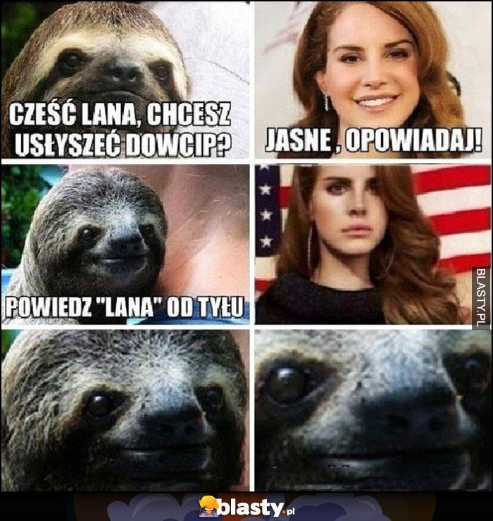 Cześć Lana chcesz dowcip, powiedz Lana od tyłu
