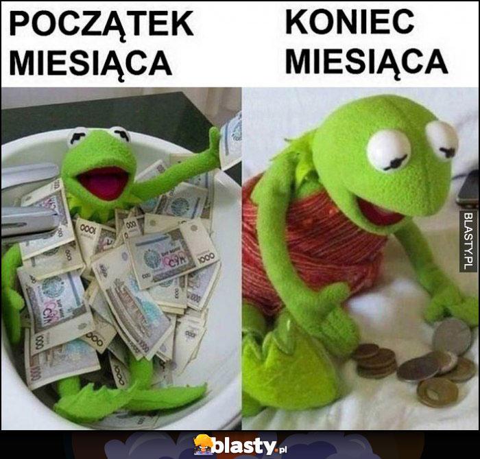 Kermit początek miesiąca kąpie się w hajsie, koniec miesiąca liczy drobne