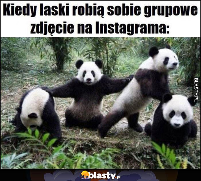 Kiedy laski robią sobie grupowe zdjęcie na instagrama pandy