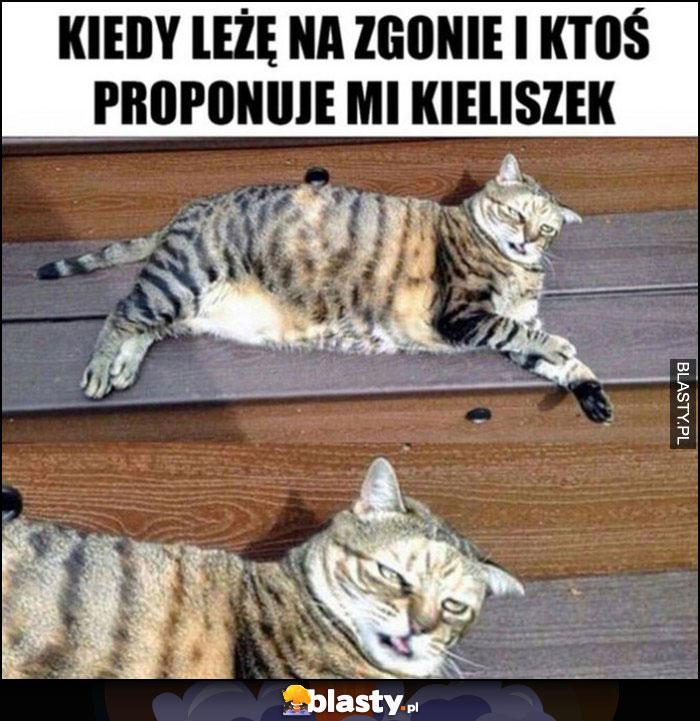 Kiedy leżę na zgonie i ktoś proponuje mi kieliszek, zmęczony kot
