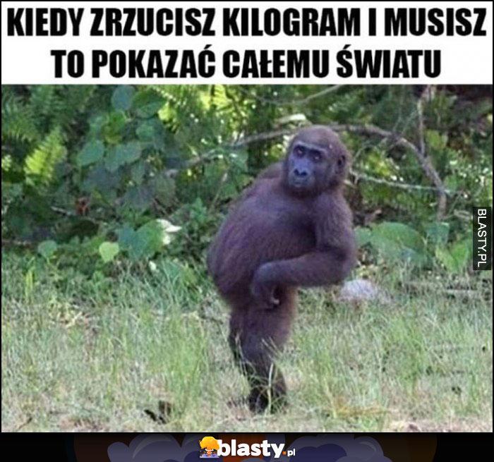 Kiedy zrzucisz kilogram i musisz to pokazać całemu światu małpa