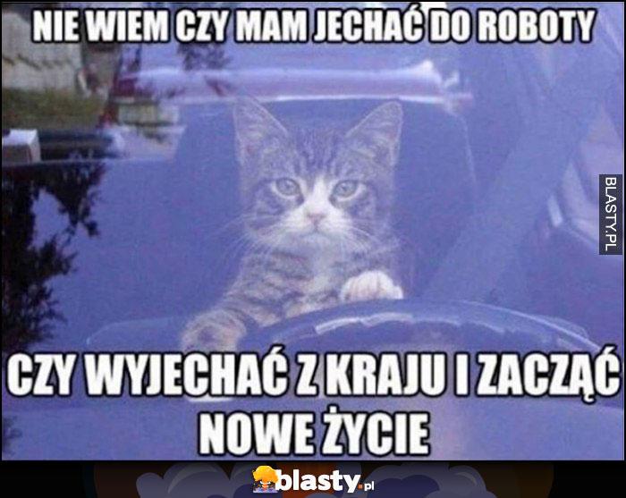 Kot kierowca nie wiem czy mam jechać do roboty czy wyjechać z kraju i zacząć nowe życie