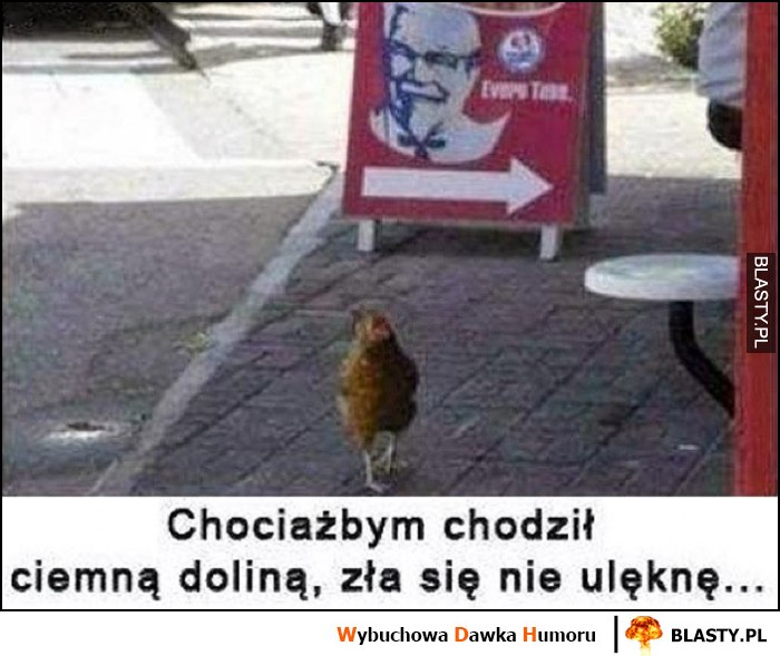 Kura kurczak przy KFC chociażbym chodził ciemną doliną, zła się nie ulęknę