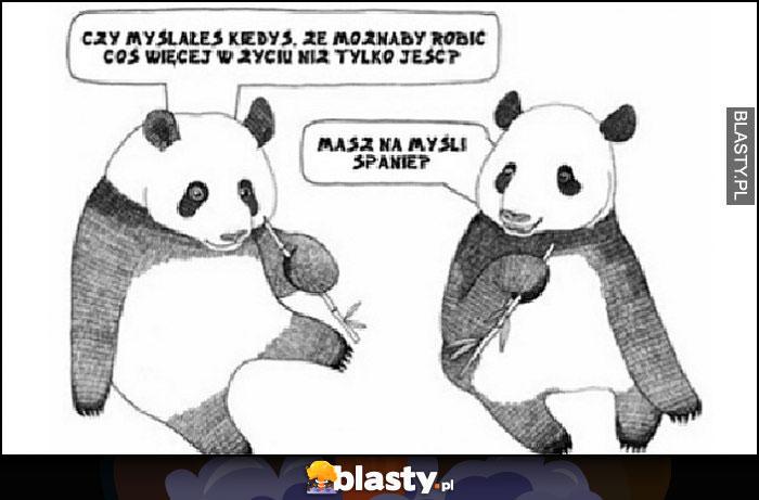 Pandy myślałeś, kiedyś że możnaby robić coś więcej w życiu niż tylko jeść? Masz na myśli spanie?