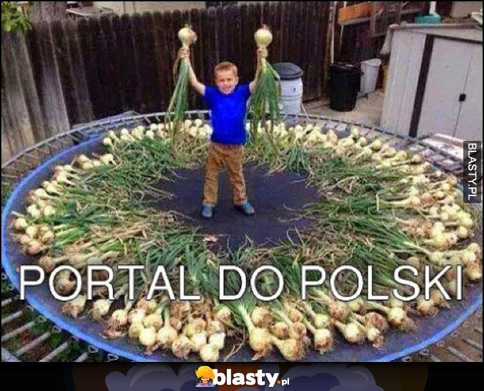 Portal do Polski batut trampolina cebule