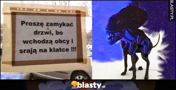 Proszę zamykać drzwi bo wchodzą obcy i srają na klatce Alien