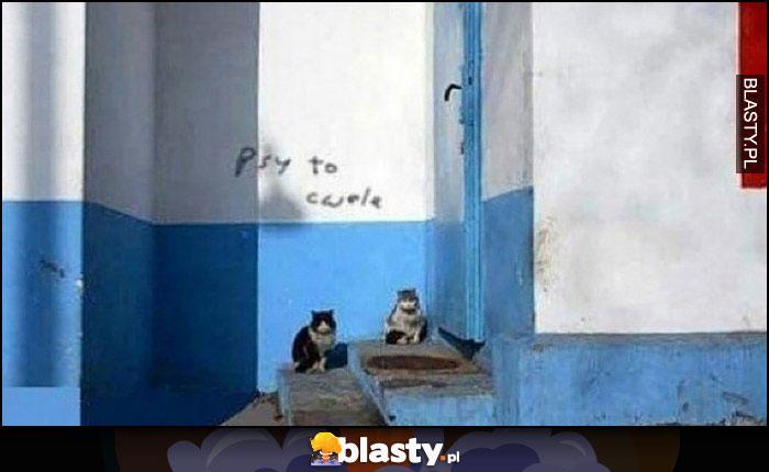Psy to cwele wrzut koty napis na murze