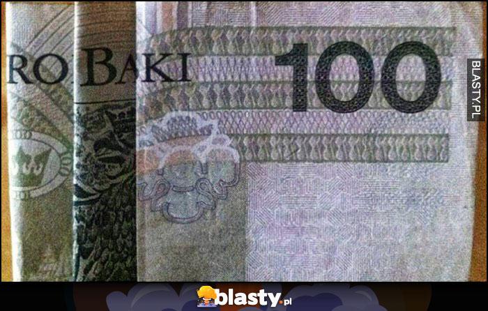 Robaki ułożone z banknotów 100 PLN 100 złotych