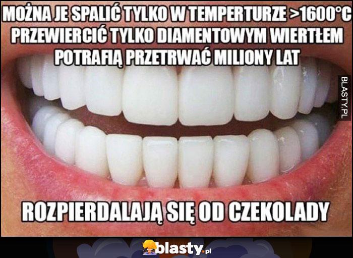 Zęby można je spalić w temp 1600 stopni, przewiercić diamentowym wiertłem ale rozwalają się od czekolady