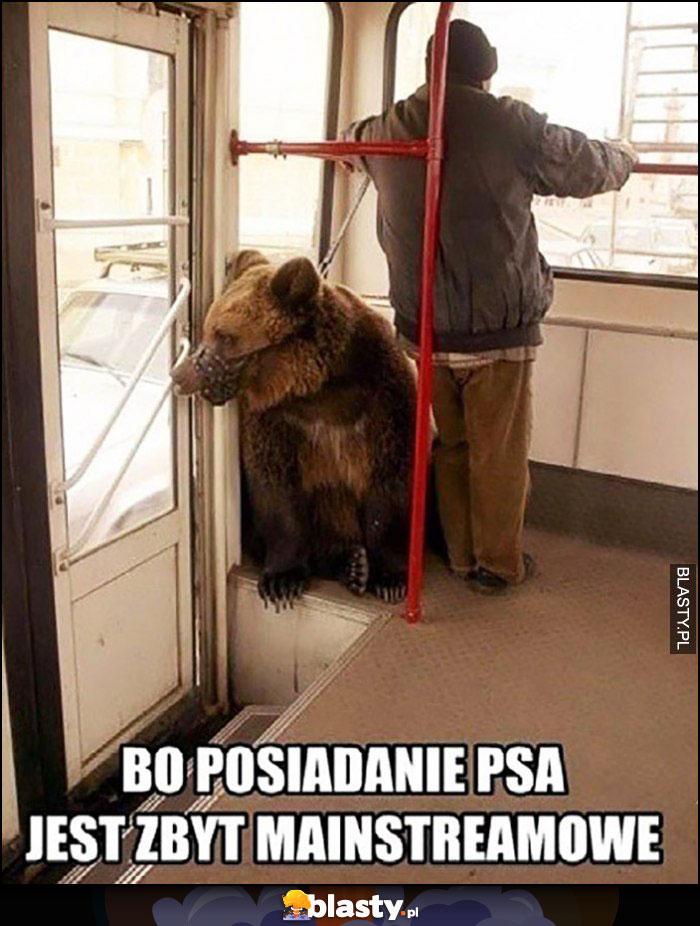 Bo posiadanie psa jest zbyt mainstreamowe niedźwiedź w kagańcu