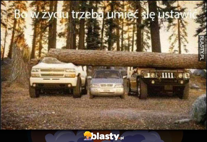 Bo w życiu trzeba umieć się ustawić, samochód pomiędzy dwoma większymi przygniecionymi