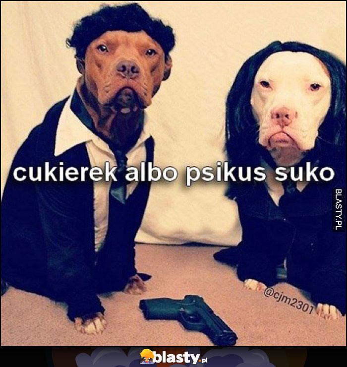 Cukierek albo psikus suko psy w przebraniu Pulp Fiction