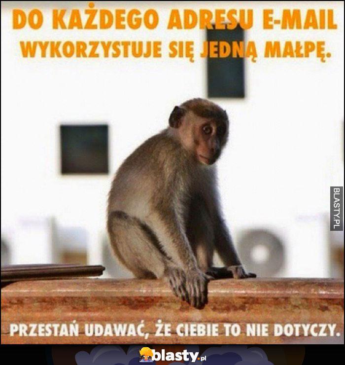 Do każdego adresu e-mail wykorzystuje się jedną małpę, przestań udawać, że Ciebie to nie dotyczy