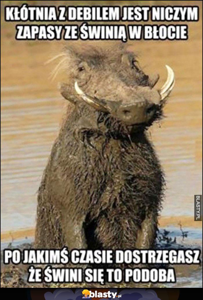 Kłótnia z debilem jest niczym zapasy ze świnią w błocie, po jakimś czasie dostregasz, że świni się to podoba