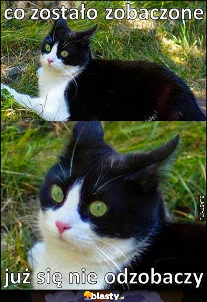 Kot co zostało zobaczone już się nie odzobaczy
