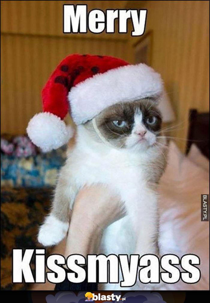 Kot Grumpy Merry Kissmyass