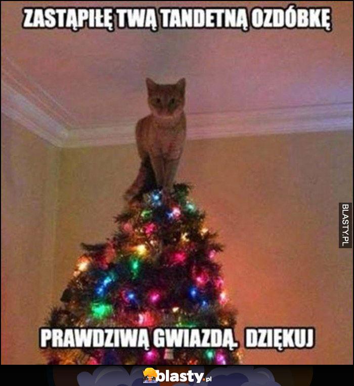 Kot na choince, zastąpiłem twą tandetną ozdóbkę prawdziwą gwiazdą, dziękuj