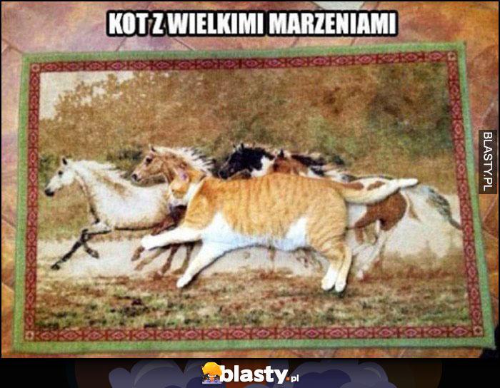Kot z wielkimi marzeniami leży na dywanie z końmi