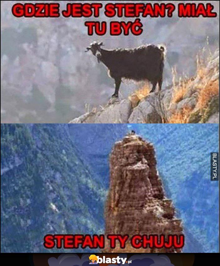 Koza na szczycie góry, gdzie jest Stefan miał tu być, Stefan Ty kuju