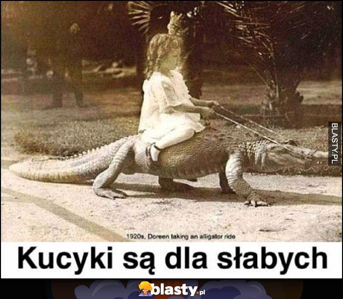 Kucyki są dla słabych, dziewczynka jeszcze na aligatorze