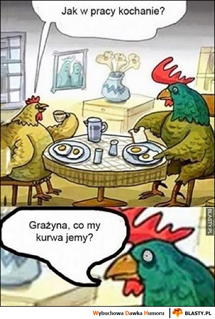 Kura kogut jedzą jajka, Grażyna co my kurna jemy?
