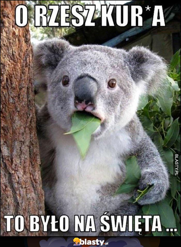 O rzesz kurna to było na święta miś koala