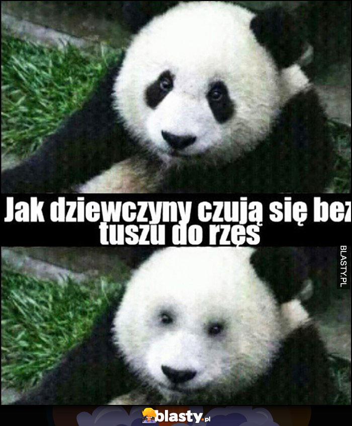 Panda jak dziewczyny czują się bez tuszu do rzęs