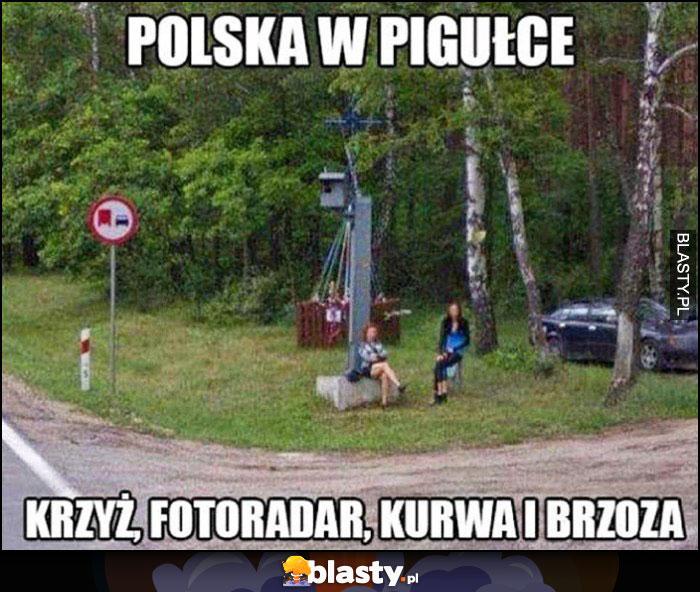 Polska w pigułce: krzyż, fotoradar, kurna i brzoza