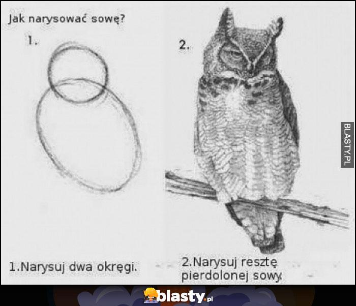 Poradnik jak narysować sowę: 1. narysuj dwa okręgi, 2. narysuj resztę sowy