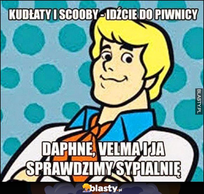 Scooby-doo Kudłaty i Scooby idźcie do piwnicy. Daphne, Velma i ja sprawdzimy sypialnię