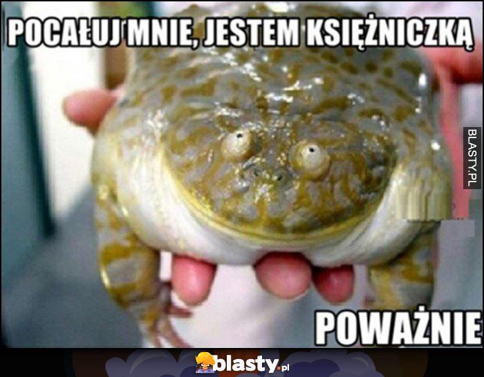 Żaba pocałuj mnie, jestem księżniczką, poważnie