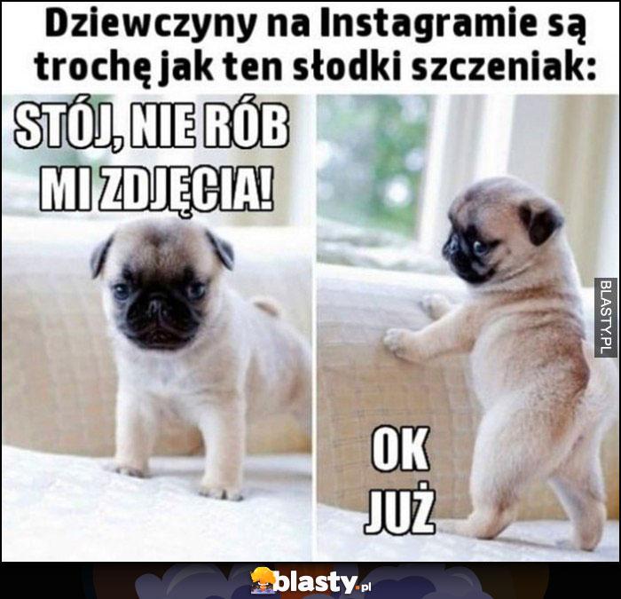 Dziewczyny na Instagramie są trochę jak ten słodki szczeniak: stój, nie rób mi zdjęcia, ok już pozuje