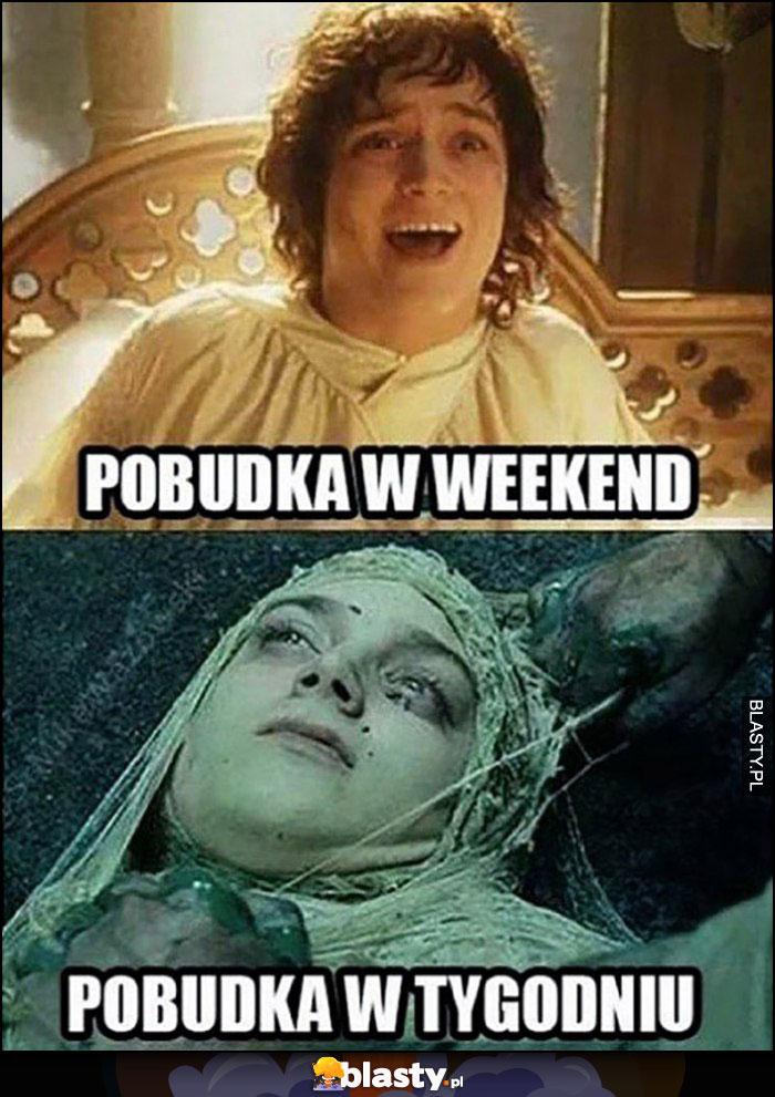 Frodo pobudka w weekend vs pobudka w tygodniu porównanie