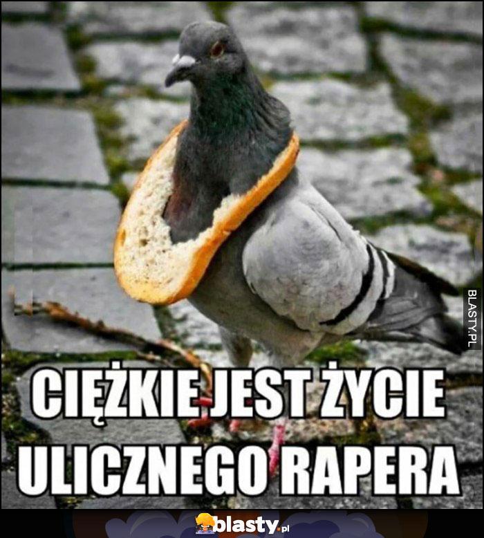 Gołąb z chlebem na szyi ciężkie jest życie ulicznego rapera