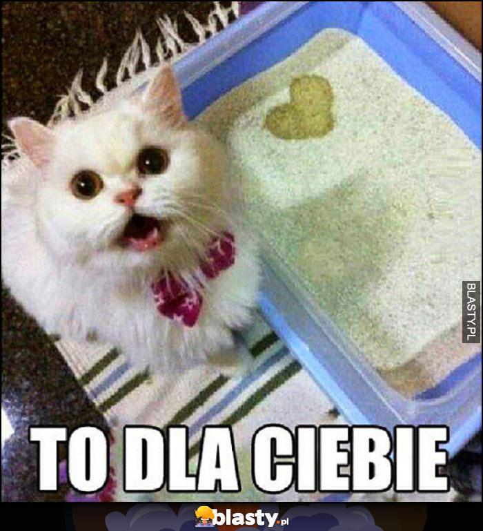 Kot nasikał serduszko w kuwecie to dla Ciebie