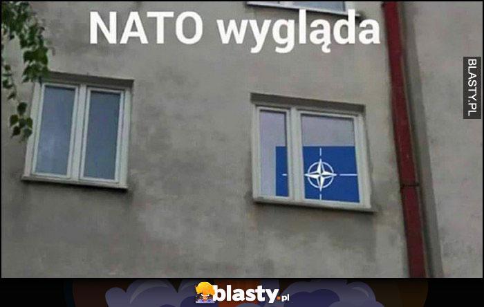 NATO wygląda dosłownie logo NATO patrzy przez okno