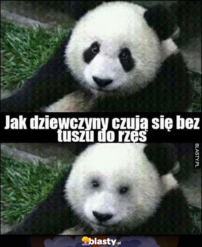 Panda jak dziewczyny czują się bez tuszu do rzęs oczy bez czarnych plam