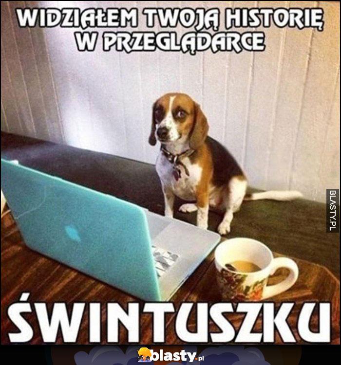 Pies widziałem Twoją historię w przeglądarce świntuszku
