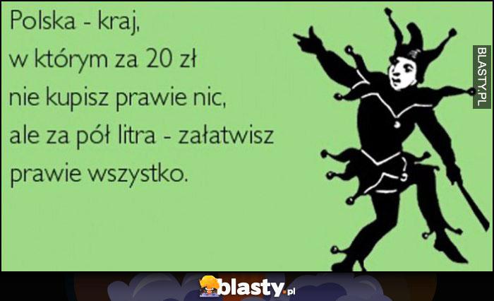 Polska - kraj w którym za 20 zł nie kupisz prawie nic, ale za pół litra załatwisz prawie wszystko