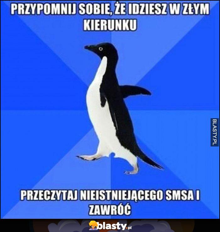 Przypomnij sobie, że idziesz w złym kierunku, przeczytaj nieistniejącego SMSa i zawróć pingwin