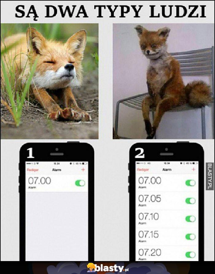 Są dwa typy ludzi jeden budzik vs wiele budzików lis lisy