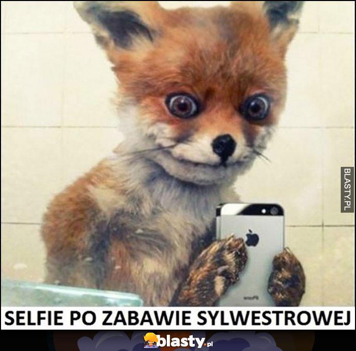 Selfie po zabawie sylwestrowej lis lisek
