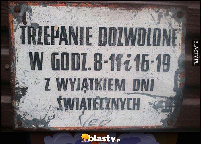 Trzepanie dozwolone w godzinach 8-11 i 16-19 z wyjątkiem dni świątecznych tabliczka napis