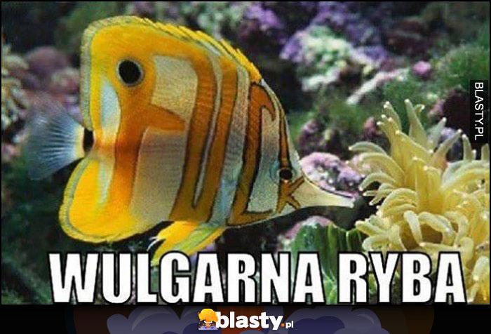 Wulgarna ryba napis litery F U C K