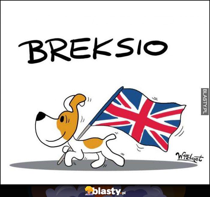Breksio brexit Reksio